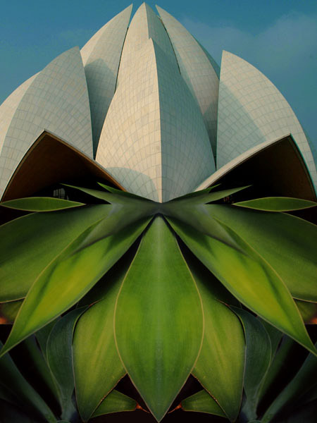 New Dehli. Bahai Lotus Temple. Hommage to Parivis Shaba