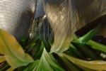 Bilbao/Spain.Guggenheim Museum. Hommage to Frank Gehry
